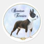 Pegatina del retrato de Boston Terrier