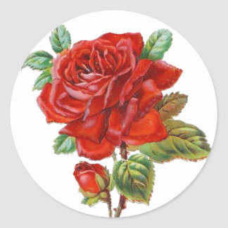 Pegatina del rosa rojo del vintage