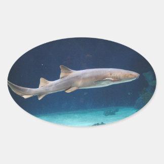 Pegatina del tiburón