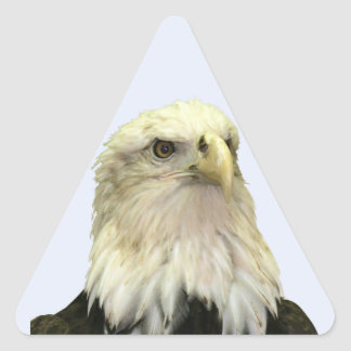 Pegatina del triángulo de Eagle calvo