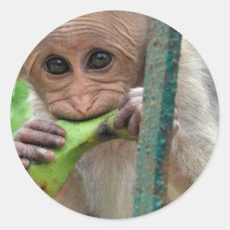 Pegatina divertido de la imagen del mono