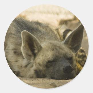 Pegatina durmiente del Hyena