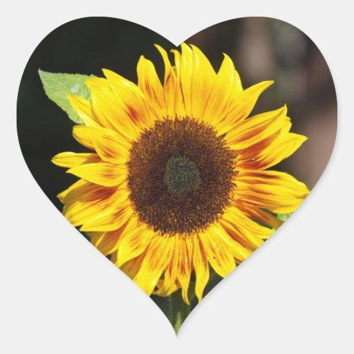 Pegatina en forma de corazón del girasol amarillo