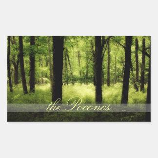 Pegatina etéreo de Poconos de maderas del verano