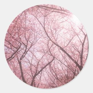 Pegatina etéreo rosado del árbol de la flor de cer