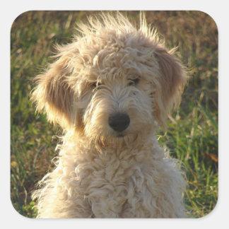 Pegatina/etiqueta del saludo del perro de perrito pegatina cuadrada