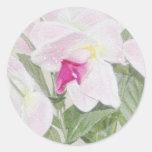 Pegatina exótico de las orquídeas