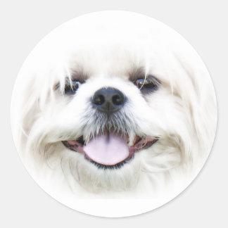Pegatina feliz de la cara del perro