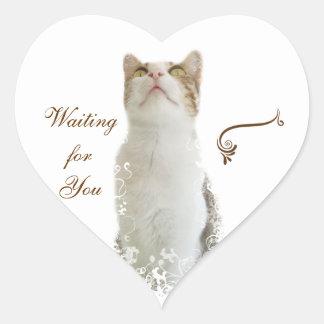 Pegatina floral blanco del corazón del gato