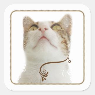 Pegatina floral blanco del cuadrado del gato