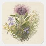 Pegatina floral del cardo del vintage