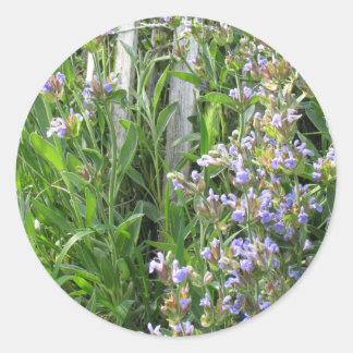 Pegatina floreciente de la hierba del sabio azul