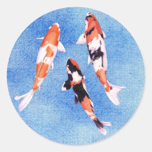 Pegatina flotante del azul de Koi