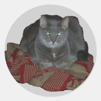 Pegatina gruñón gris del gato de Buddah