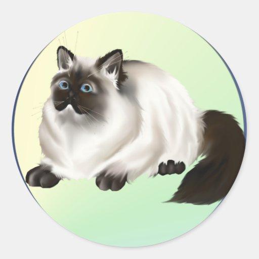Pegatina Himalayan del gatito