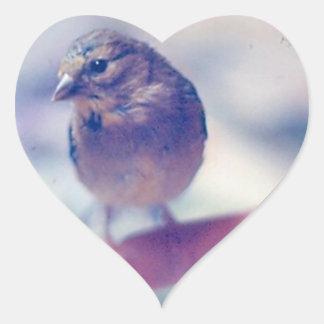 Pegatina huérfano del corazón del Goldfinch