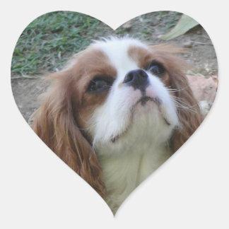 Pegatina lindo arrogante del corazón del perro de