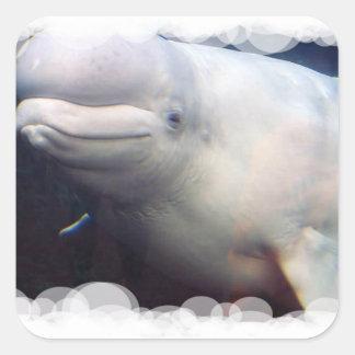 Pegatina lindo de la ballena de la beluga