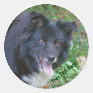 Pegatina lindo sonriente del perro del border