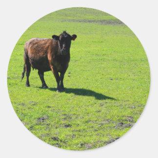 Pegatina negro de la vaca