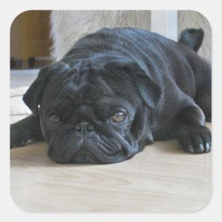 Pegatina negro lindo de la foto del perrito del