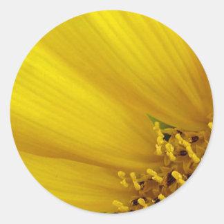 Pegatina nupcial de la ducha de la flor de Sun