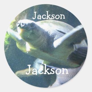 Pegatina para el nombre: Jackson