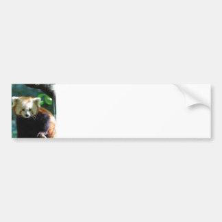 Pegatina para el parachoques adorable de la panda  pegatina para auto