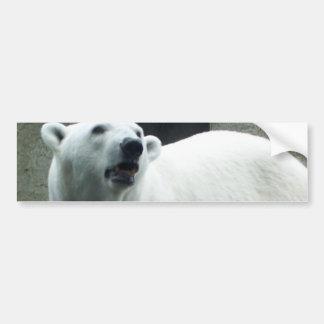 Pegatina para el parachoques blanca del oso polar pegatina de parachoque