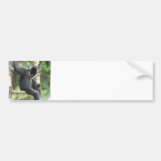 Pegatina para el parachoques blanca joven del mono etiqueta de parachoque