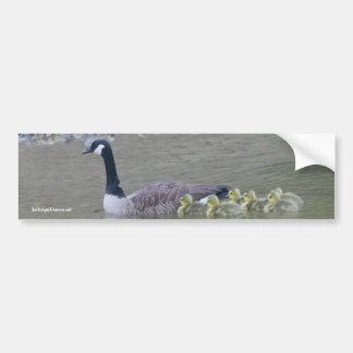 Pegatina para el parachoques canadiense de la foto pegatina de parachoque