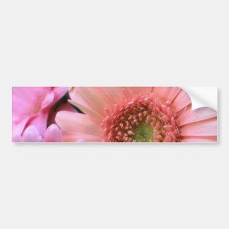 Pegatina para el parachoques colorida de las marga etiqueta de parachoque