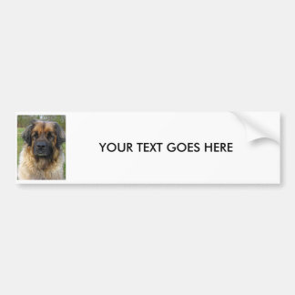 PEGATINA PARA EL PARACHOQUES de encargo del perro  Pegatina Para Auto