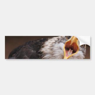 Pegatina para el parachoques de griterío de Eagle Etiqueta De Parachoque
