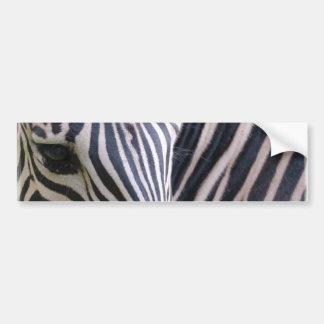 Pegatina para el parachoques de la cebra etiqueta de parachoque
