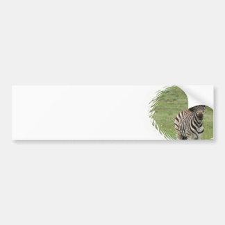 Pegatina para el parachoques de la cebra del bebé etiqueta de parachoque