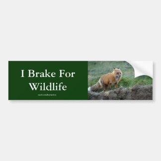 Pegatina para el parachoques de la fauna del Fox Pegatina Para Auto
