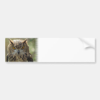 Pegatina para el parachoques de la foto del búho pegatina para auto