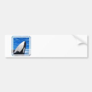 Pegatina para el parachoques de la orca etiqueta de parachoque