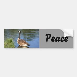 Pegatina para el parachoques de la paz del ganso d pegatina de parachoque