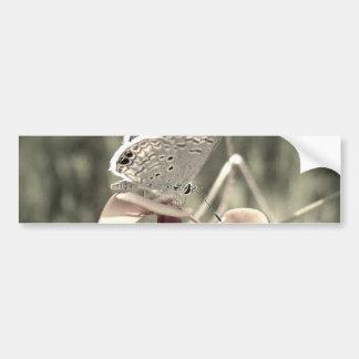 Pegatina para el parachoques de la polilla pegatina para auto