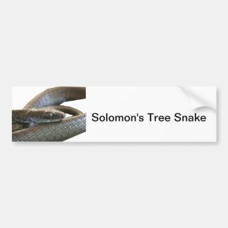 Pegatina para el parachoques de la serpiente del á pegatina para auto