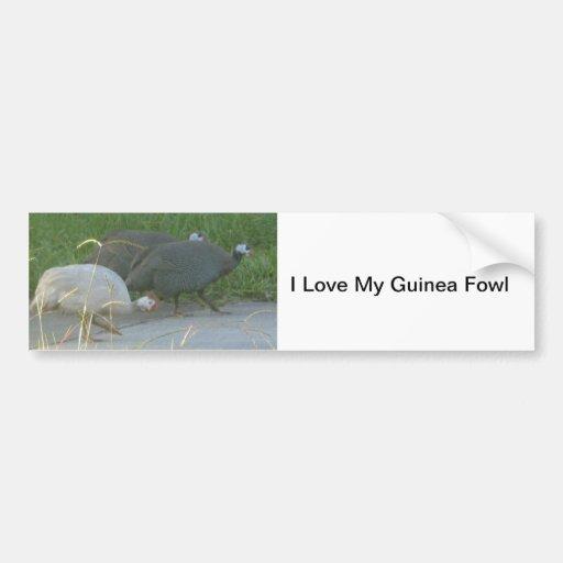Pegatina para el parachoques de las aves de Guinea Pegatina De Parachoque