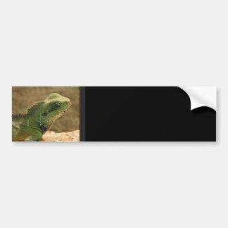 Pegatina para el parachoques de las fotos de la ig pegatina para auto