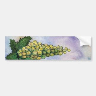 Pegatina para el parachoques de las uvas de vino d pegatina para auto