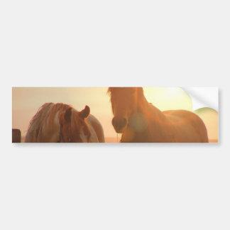 Pegatina para el parachoques de los caballos de la pegatina para auto