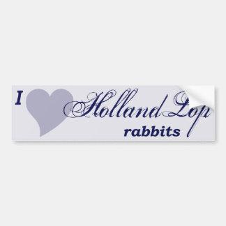 Pegatina para el parachoques de los conejos de