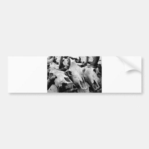 Pegatina para el parachoques de los cráneos de la  etiqueta de parachoque
