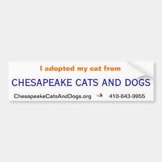 Pegatina para el parachoques de los gatos y de los pegatina de parachoque