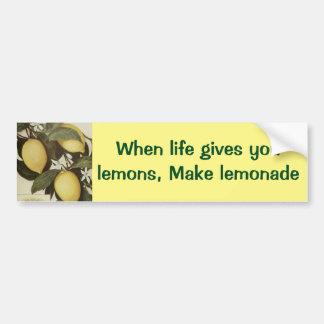 Pegatina para el parachoques de los limones pegatina para auto